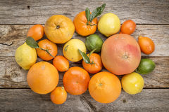 Citrus fruit collection on weathered wood Royalty Free Stock Image