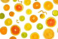 Citrus Fruit Design Stock Photos