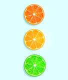 Citrus fruit in the form of traffic lights Stock Images