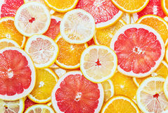 Citrus-fruit of Fresh fruit slices Stock Photography