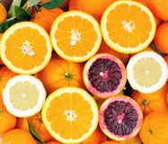 Citrus fruit Stock Photography
