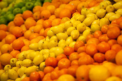Citrus Fruit Group Stock Image