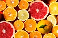 Citrus fruit. Stock Photo