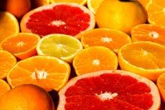 Citrus fruit. Stock Photos