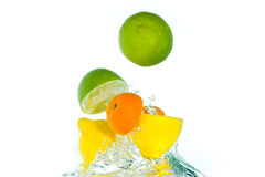 Citrus fruit jumping out of the water Stock Photos