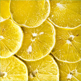Citrus-fruit of lemon slices. Stock Photography