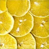 citrus-fruit of lemon slices. Stock Photography