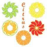Citrus fruit orange. Abstract vector illustration logo for ripe citrus fruit orange,lemon,lime,grapefruit,pomelo,cut sliced.Citrus:peel fruits lemons,ripe limes Royalty Free Stock Photo