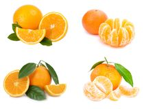 Citrus fruit. Orange on white Stock Photos