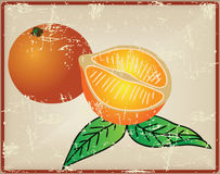 Citrus fruit - oranges Stock Photography