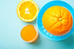 Citrus fruit oranges with glass of juice and manual juicemaker royalty free stock photography