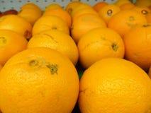 Citrus fruit in order Stock Images