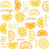 Citrus fruit seamless pattern Stock Photography