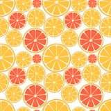 Citrus fruit seamless pattern Royalty Free Stock Photography