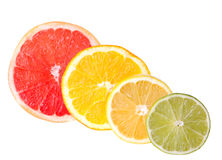 Citrus Fruit Sections. Collection sections different citrus fruits Stock Photo