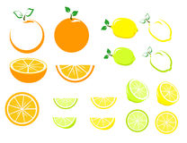 Citrus Fruit Set. Lemon, orange and lime set in whole fruit and slices royalty free illustration