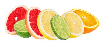 Citrus Fruit Set orange, grapefruit, lime, lemon isolated on white. Background Royalty Free Stock Photography