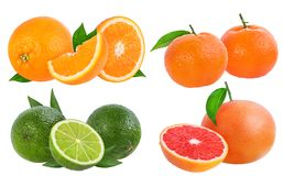 Citrus Fruit Set orange, grapefruit, lime, tangerine or mandarin fruit isolated. On white background Stock Photo