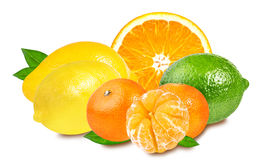 Citrus Fruit Set (tangerine, orange, lime, lemon)  on wh Stock Photography
