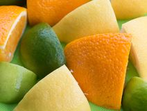 Citrus Fruit Shows Orange Green And Tropical Stock Photography