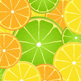 Citrus fruit slice background Royalty Free Stock Images