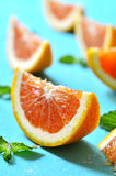 Citrus fruit slice. Stock Photos