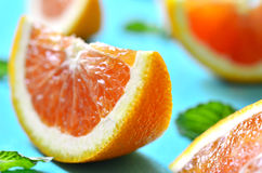 Citrus fruit slice. Stock Images