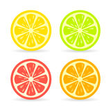 Citrus fruit slice vector icon Royalty Free Stock Photo