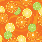 Citrus fruit slices Royalty Free Stock Photography