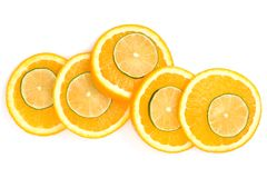 Citrus fruit slices Stock Image