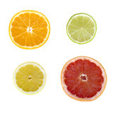 Citrus fruit slices Royalty Free Stock Image