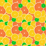 Citrus fruit slices background. Stock Photography