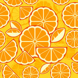 Citrus Fruit Slices background Royalty Free Stock Image