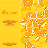 Citrus Fruit Slices background in yellow & text,  illustra Royalty Free Stock Photography