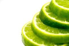 Citrus Fruit Slices Macro Stock Photography