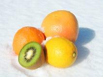 Citrus Fruit on Snow. Colorful citrus fruit - orange, grapefruit, lemon and kiwi on snow Royalty Free Stock Images
