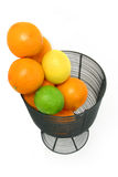 Citrus Fruit Still Life Over White Stock Photo