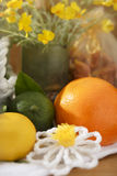 Citrus Fruit Still Life Set with Yellow Flowers Stock Photography