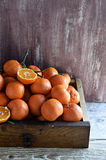 Citrus Fruit: Tangerines. Clementines. Stock Images