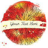 Citrus Fruit Texture. Sketch Frame. Ink Pen on Watercolor Red an Royalty Free Stock Photo