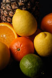 Citrus fruit,various fruits with black background Royalty Free Stock Image