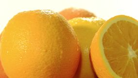 Citrus fruit Stock Image