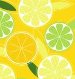 Citrus fruit on yellow background Royalty Free Stock Photo