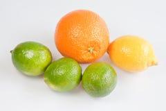 Citrus Fruits. Orange, lemon & limes against a white background Stock Image