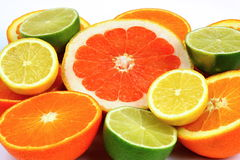 Free Citrus Fruits Stock Photos - 12905043