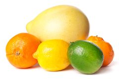 Citrus fruits Royalty Free Stock Image