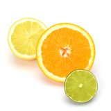 Citrus fruits Royalty Free Stock Photos