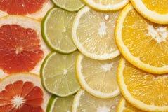 Citrus fruits. Citrus fruit cut into slices Royalty Free Stock Images
