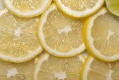 Citrus fruits. Citrus fruit cut into slices Stock Photos