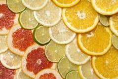 Citrus fruits. Citrus fruit cut into slices Stock Photo